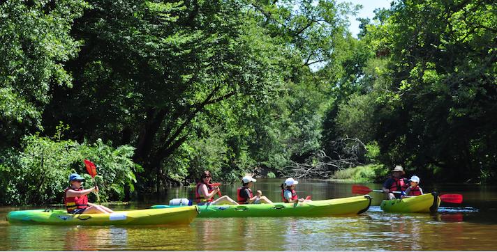 randonnée en canoë sur la Leyre