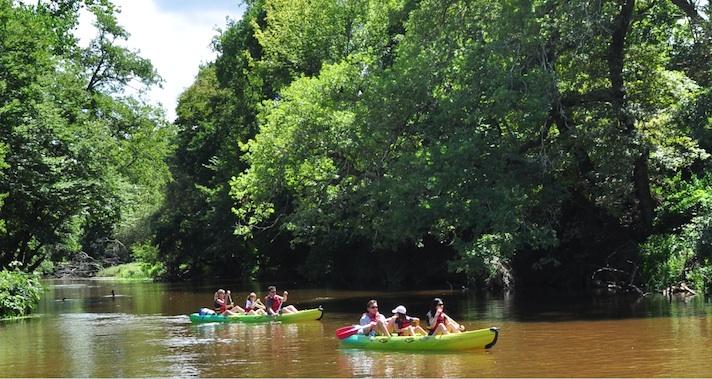 randonnée en kayak sur la Leyre